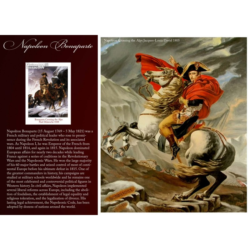 a biography of napoleon bonaparte the political leader Napoleon i: napoleon i, french general, first consul (1799–1804), and emperor (1804–1814/15), one of the most-celebrated personages in the history of the west.