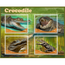 Fauna Crocodiles