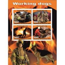 Fauna Firedogs