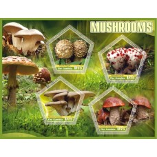 Flora mushrooms