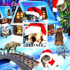 Fauna Snow and Cats