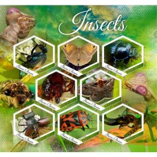 Fauna Insects