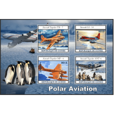 Transport Polar aviation