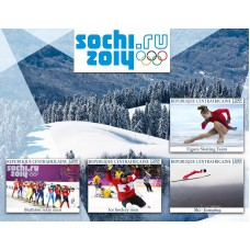 Sport Olympic Games in Sochi 2014