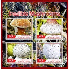 Inedible mushrooms
