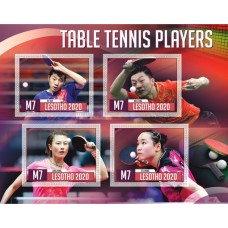 Sport Table tennis players