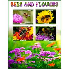 Fauna Bees and flowers
